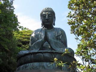Tokyo29