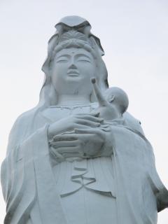 Tohoku17